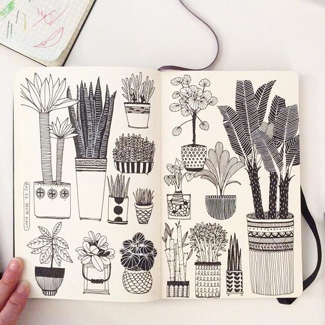 Day 24, House Plant #CBDrawADay #creativebug #linedrawing #doodle #sketchbook…