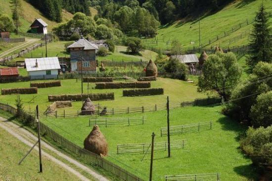 satu mare countryside