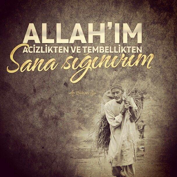 Allah'ım! Acizlikten ve tembellikten sana sığınırım.  [Buhari]  Amin.  #hadis #aciz #tembel #dua #amin #iman #hafisler #dualar #müslüman #türkiye #islam #istanbul #ilmisuffa