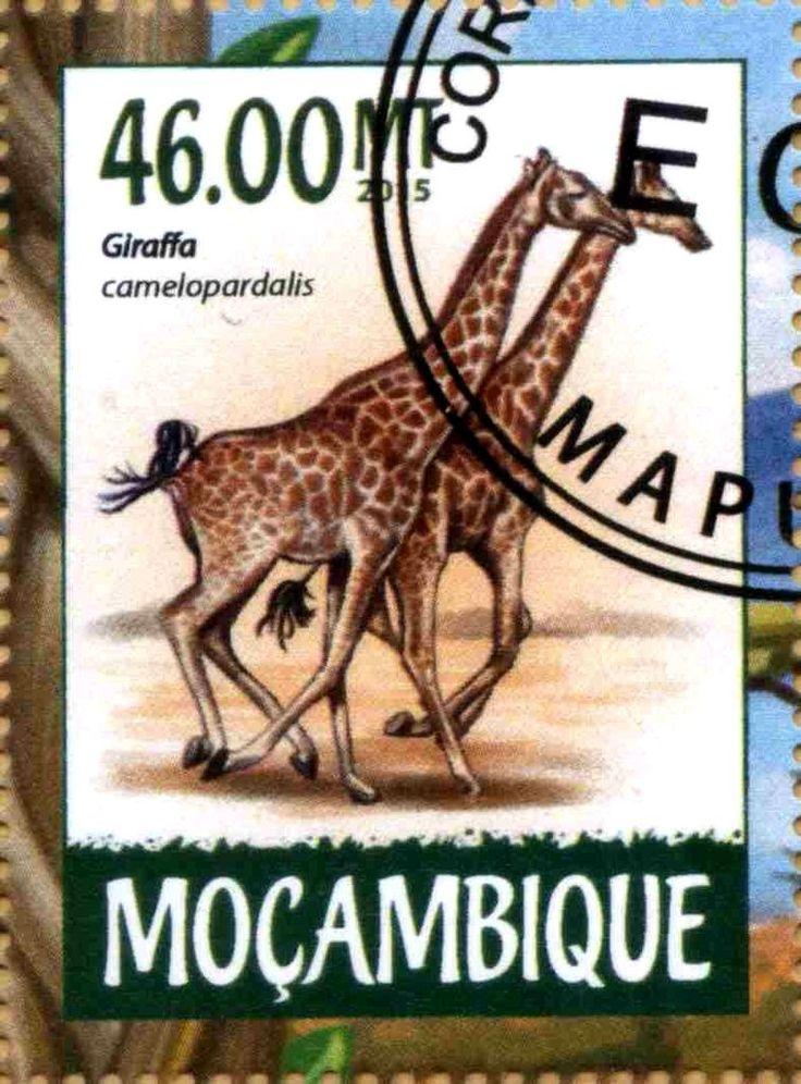 Stamp: Giraffa camelopardalis (Mozambique) Col:MZ 2015-03/2