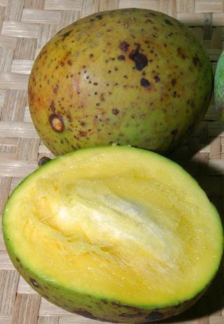 Mangga Kweni