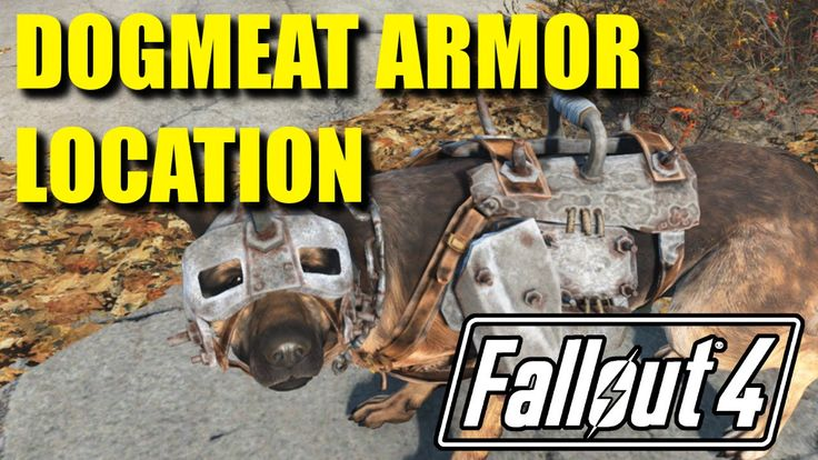 Fallout 4 | DOGMEAT ARMOR LOCATION!