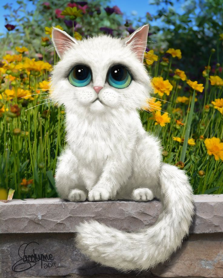 Wall Eyed Cat