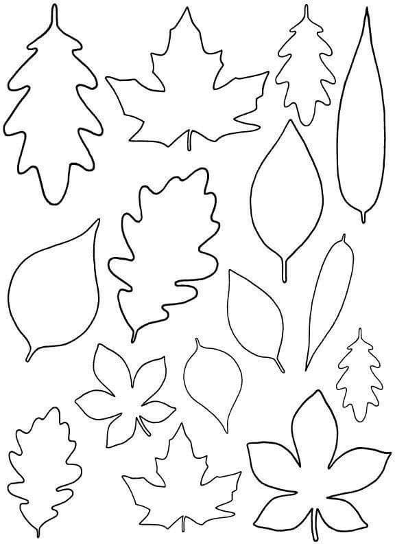 Осенние листочки картинки для оформления трафарет, картинки