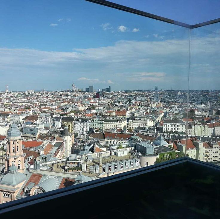 Blick auf die Stadt Wien  #insekten #garten #foto #fotografie #stadt