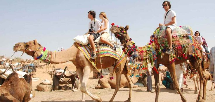 New Year Group Tours