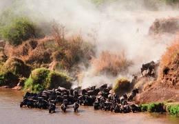 Rondreis Safari + Tropische Stranden - TANZANIA Rondreis Tanzania - Oad Reizen