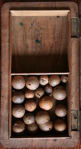 oak galls by ART NAHPRO, via Flickr