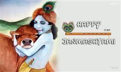 Happy Janmashtami Festival Wallpaper,Happy Janmashtami Festival Hd And Hq Wallpaper For Janmashtami Wishes