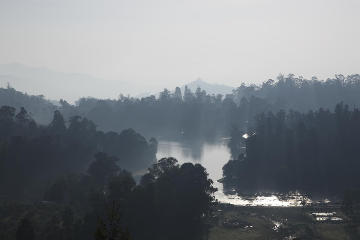 As you leave behind the hot Tamil Nadu plains and approach the cool, pine-scented air of #Kodaikanal, 2,133 metres up in the Palani hills, you'll feel the same way as a bunch of early British and American missionaries. In the early 19th century, these foreigners who stumbled into Kodaikanal were so touched by its beauty and grateful for the escape from the heat that they built a town here. They built homes and churches, cut paths, paved roads and introduced new trees such as eucalyptus and…
