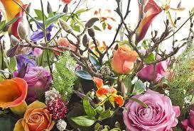 Afbeeldingsresultaat voor jasmijn bloemen haarlem
