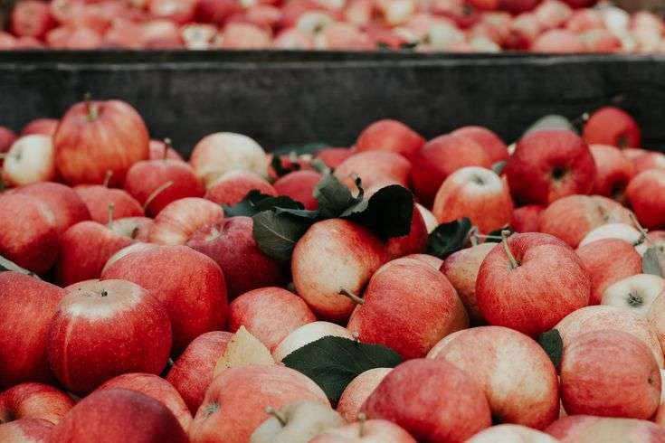 7 Gründe, um täglich 1 Löffel Apfelessig zu sich zu nehmen ♨ Apfelessig gegen Cellulite, als Fatburner, gegen Übergewicht ▶ ▷ So funktioniert es ▶ ▷