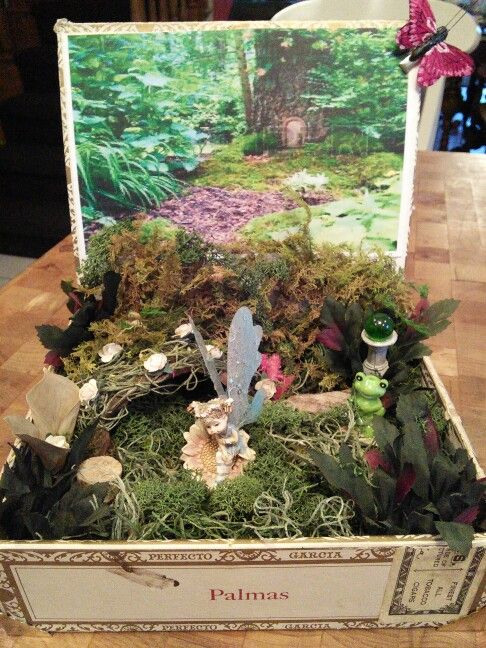 Fairy Garden In Old Cigar Box