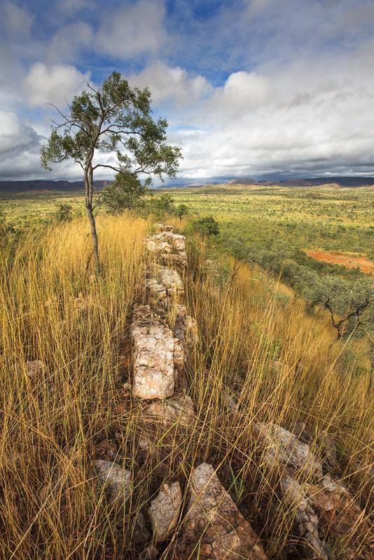 View across the plains of the Kimberly near Lake Argyle Australia