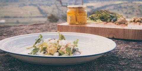 Chicken and parsley pesto recipe