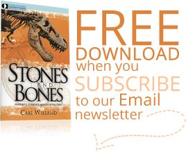 Subscribe to download Stones and Bones PDF for free!