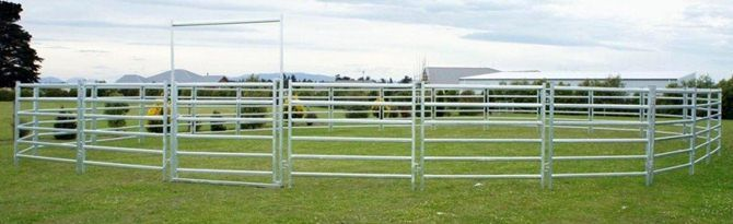 Premium Lifestyle 55ft Round Horse Yard | Trade Me