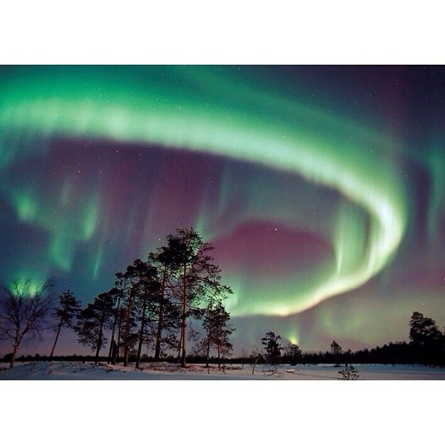 The REAL winter wonderland exists (and it's in Finland.) read about this magical destination in our gift guide today. #northernlights #travelwell #goexplore