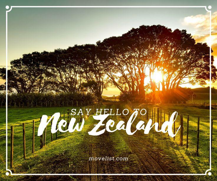 Find a reputable New Zealand visa advisor