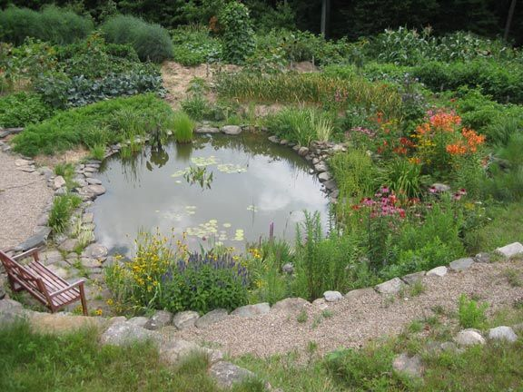 142 Best Images About Garden - Glass Planting/Natural Swimming