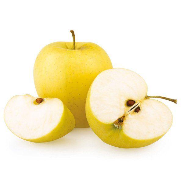 Jabłoń - Malus domestica 'Biały Nalew'