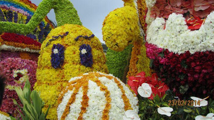 Flower Festival Philippines '14