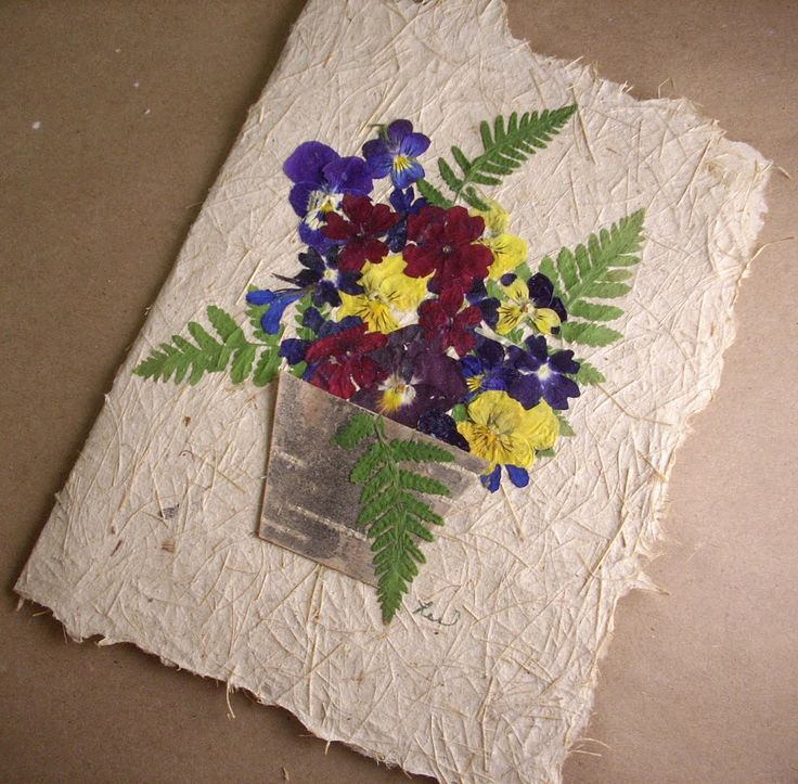 Flores secas para targetas buscar con google casa - Plantas secas decoracion ...