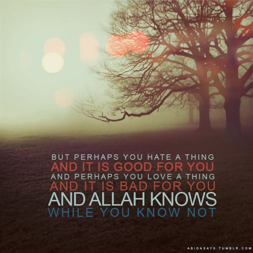Perhaps #Allah #islamic #quotes #knows #you #know #not