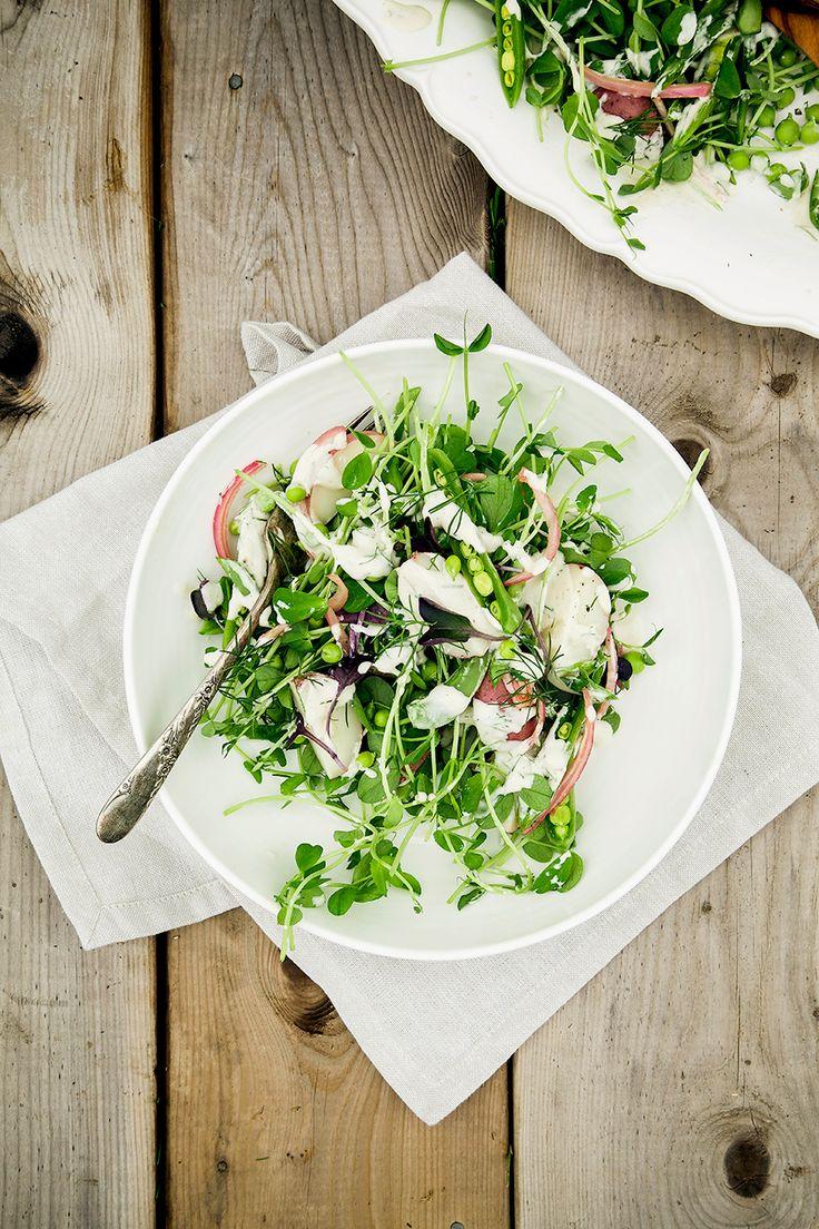 カイワレ大根のような見た目の豆苗はコストパフォーマンス抜群のエコ野菜。いただくときに残した根本に、お水を注いで1週間ほどおけば、にょきにょきと伸びてまた食べられちゃうんです♪シャキシャキとした歯触りに、ほんのりと香る豆の風味が美味しい豆苗。そんな、豆苗を使った炒め物や和え物、鍋に丼モノなどのレシピを集めてみました♪