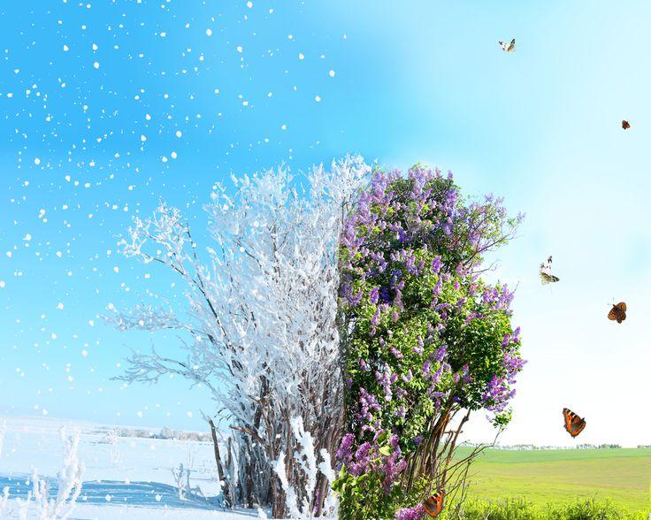 První jarní den je tu, astronomicky přesně je to letos 20. března ve 23:44:53 hodin. I tak ale pořád platí staré dobré pořekadlo: Březen, za kamna vlezem...  #Klimatizace #TepelnaCerpadla #Samsung #KlimatizaceSamsung #Czechklima