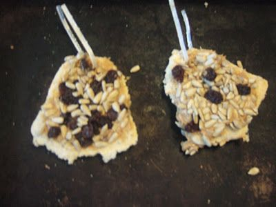 Bird feeder cookies for Daisy Girl Scouts earning their 5 Flowers, 4 Stories, 3 Cheers for Animals journey project. Easy activity for Daisies and Brownies. The girls taught their younger siblings how to do it.