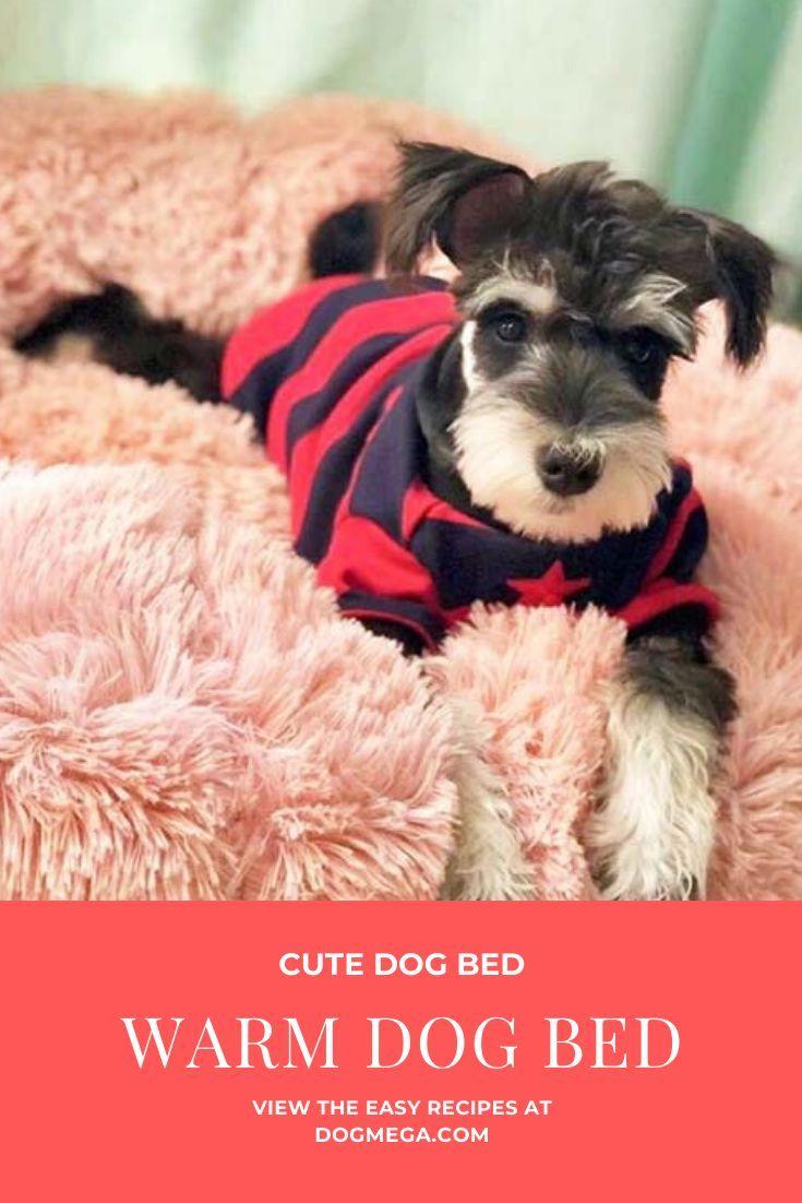 Donut Dog Bed Donut Pet Bed Donut Calming Pet Bed Plush Donut Dog Bed Dogmega Com Cute Dog Beds Warm Dog Beds Donut Dog Bed