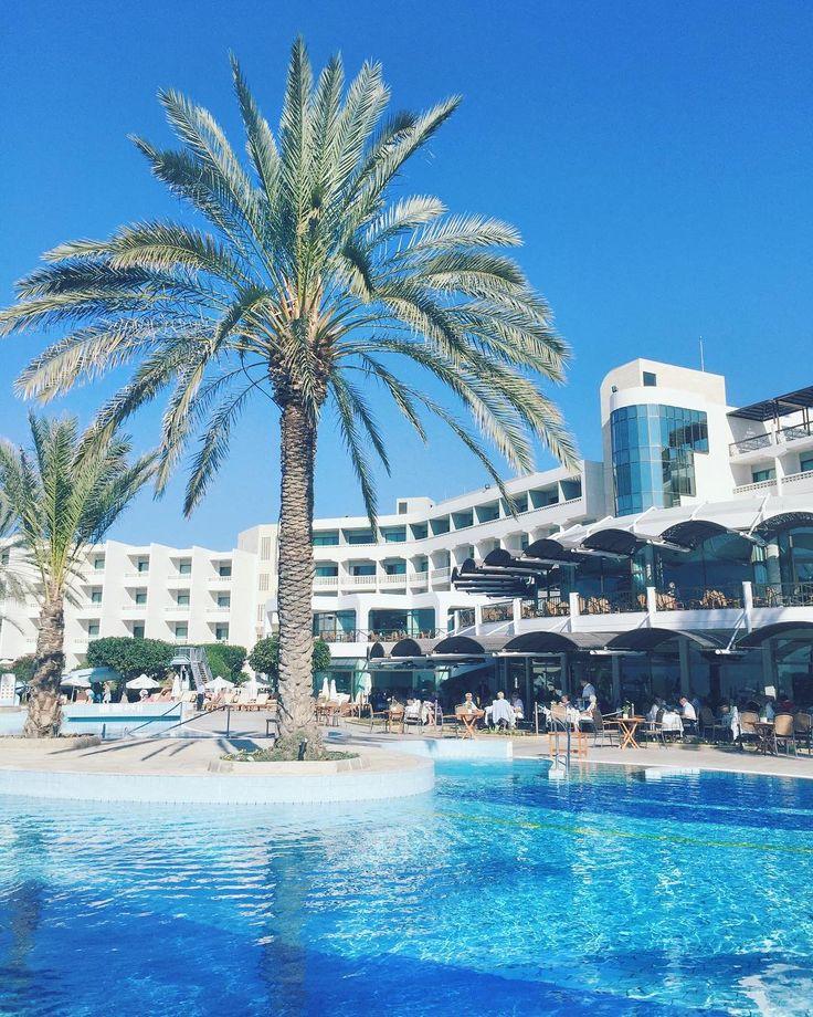 Listopadowy poranek na Cyprze   Temperatura 25 pełne słonko i orzeźwiająca kawka frappe na leżaku = zestaw idealny   #Pafos #Cypr #Cyprus #Hotel #Poolside #Travelgram #Wakacje #InstaTravel #Travelplanet #Traveluje #Podróże #Travelphotography #Instapassport #Cyprus2017 #Palmtrees