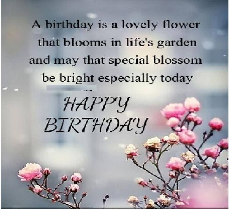 43 Happy Birthday Quotes Wishes And Sayings: 533 Best Images About Bdy Wish On Pinterest