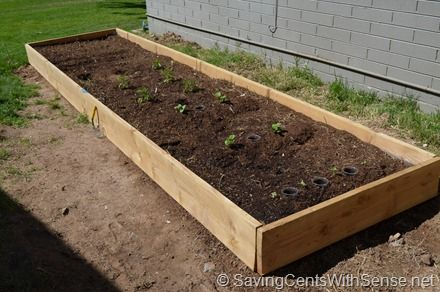 How To Build Your Own Raised Bed Vegetable Garden Frugal Living