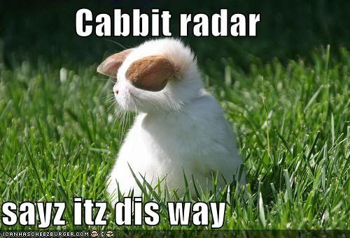 Cabbit Radar.