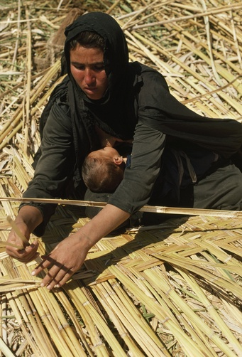 Iraq Marshlands : il parait que la femme est en train de lier les roseaux pour en faire une couverture ou un paravent ou quelque chose pour couvrir le sol