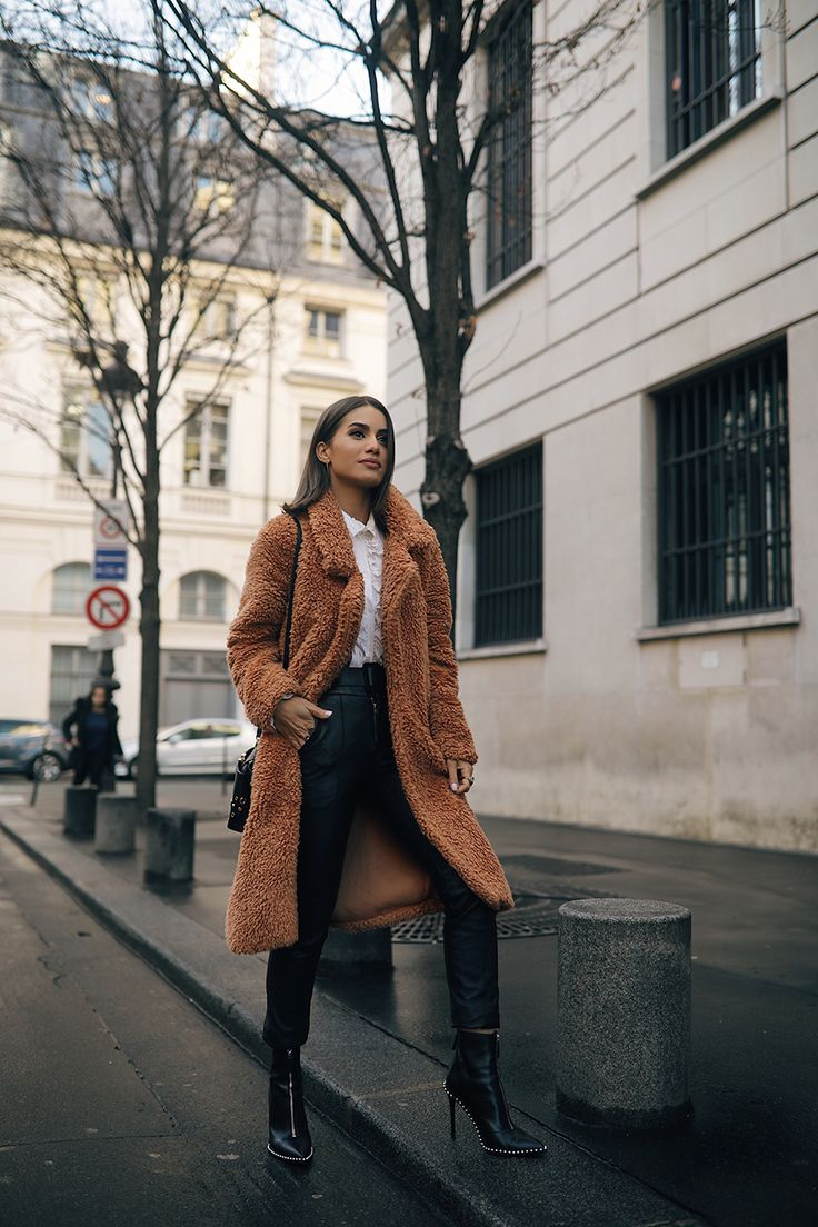 Look: Teddy Bear Coat in Paris