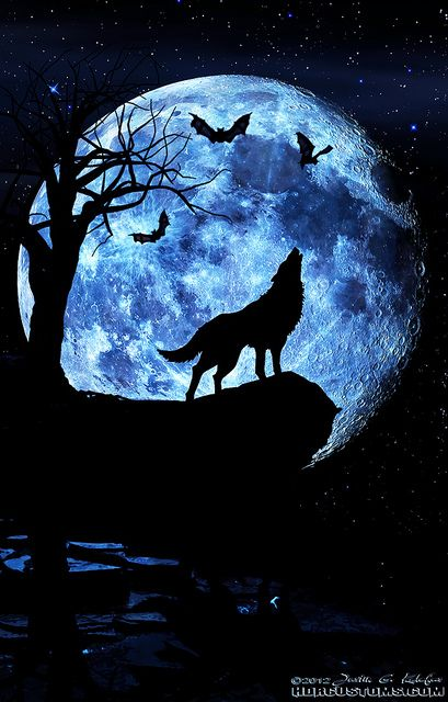 This art piece shows composition.  It shows a wolf howling at the moon, it's evening time, and it looks like owls are flying about.