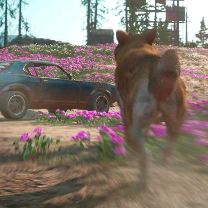 Far Cry On Instagram Two New Fangs For Hire Will Fight By Your Side In Far Cry New Dawn An Akita Named Timber And Horatio The Boar Wh Crying Dawn Far