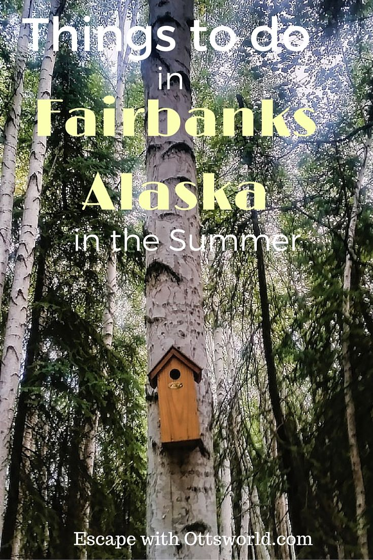 Things to do in Fairbanks Alaska in the Summer It's the gateway to the Arctic Circle, but what exactly is there to do in Fairbanks besides watch the days get shorter in the summer?