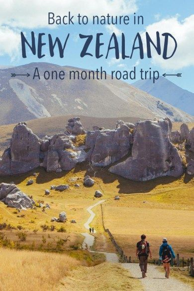 The perfect one-month road trip in New Zealand: A full itinerary with lots of tips and advice.: