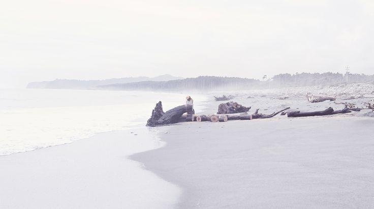 Chain Saw, Beach Wood, Black Pin, Mist, West Coast, NZ Art, Our Land, Dan Max
