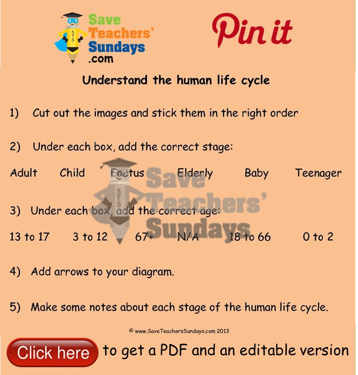 Human life cycle worksheet. Go to (url) to download this Human life cycle worksheet. #SaveTeachersSundaysUK