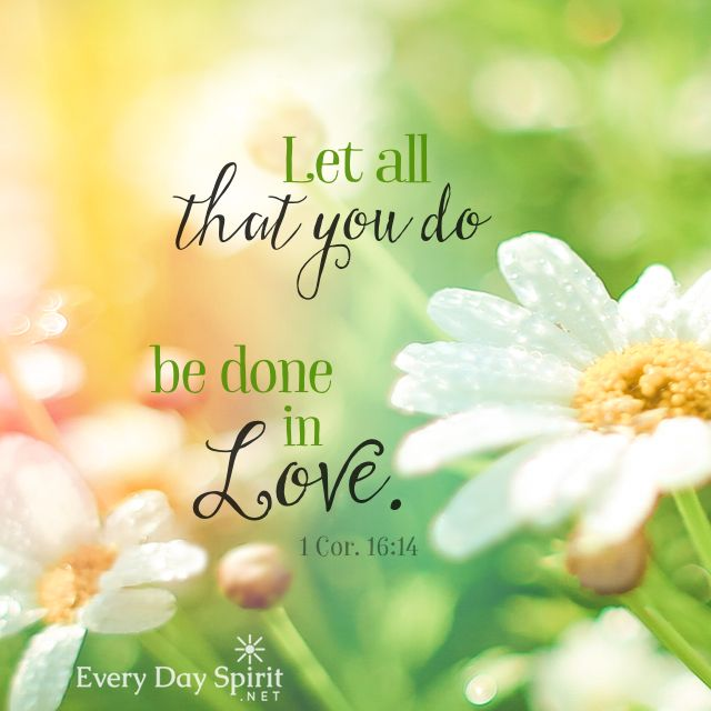 We need your love. To see the app of beautiful wallpapers ~ www.everydayspirit.net xo #love #Corinthians #scripturequote