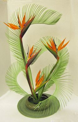 Liked on Pinterest: Design using sago and Strelitzia by Carole Martin Florida Federation of Garden Clubs Floral Design Studies instructor. Read more: http://ift.tt/1NCMhra
