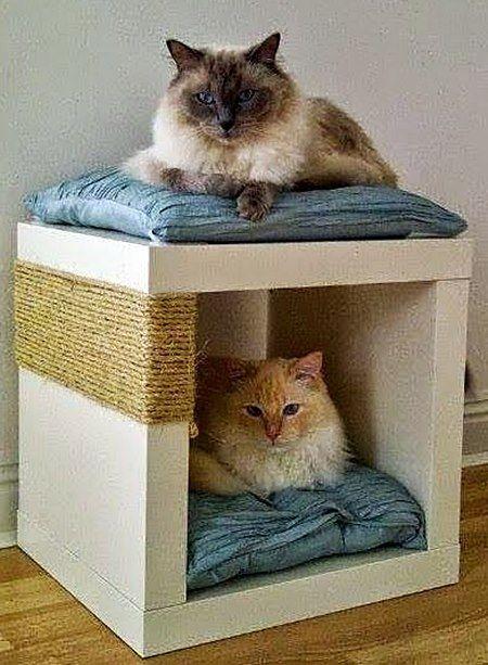 Fiz uma seleção legal de móveis e objetos que você pode fazer ou mandar fazer para alegrar seus gatinhos ou cães. Os pets vão amar!