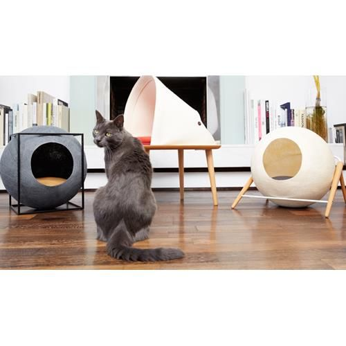 We've found what you didn't know you were looking for - designer cat furniture made in France.