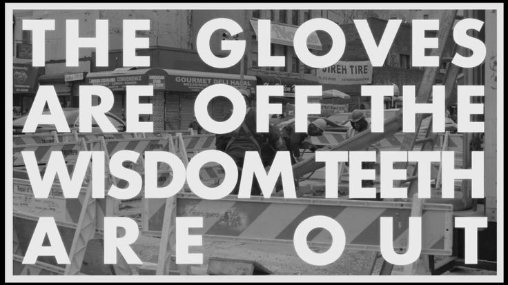 "Vampire Weekend #Lyrics - Step - ""The gloves are off, the wisdom teeth are out"""