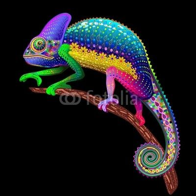 #BluedarkArt's #Chameleon #Rainbow #vector #Graphic #Art is Featured on #FOTOLIA's #Home_Page